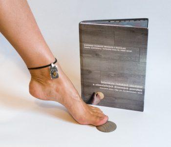 doktorandský výskum a výsledná dizertačná práca zameraná na skúmanie interakcie ľudských chodidiel a stimulačných drevených povrchov